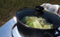 снимка на Има ли ограничение за ястията, които могат да се приготвят със Соларния котлон и Соларната фурна?